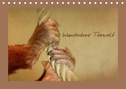 Wunderbare Tierwelt (Tischkalender 2019 DIN A5 quer) von Hultsch,  Heike