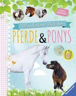 Wunderbare Welt der Pferde und Ponys von Jessler,  Nadine, Waidmann,  Angela