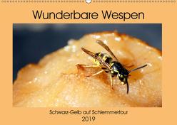 Wunderbare Wespen – Schwarz-Gelb auf Schlemmertour (Wandkalender 2019 DIN A2 quer) von von Loewis of Menar,  Henning