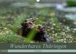 Wunderbares Thüringen – Gewässer (Wandkalender 2018 DIN A3 quer) von Flori0,  k.A.
