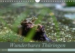Wunderbares Thüringen – Gewässer (Wandkalender 2018 DIN A4 quer) von Flori0,  k.A.