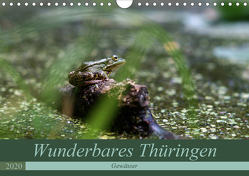 Wunderbares Thüringen – Gewässer (Wandkalender 2020 DIN A4 quer) von Flori0