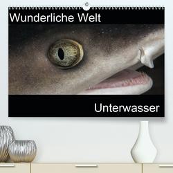 Wunderliche Welt Unterwasser (Premium, hochwertiger DIN A2 Wandkalender 2021, Kunstdruck in Hochglanz) von Bucher,  Markus