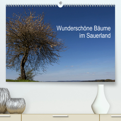 Wunderschöne Bäume im Sauerland (Premium, hochwertiger DIN A2 Wandkalender 2020, Kunstdruck in Hochglanz) von Rein,  Simone