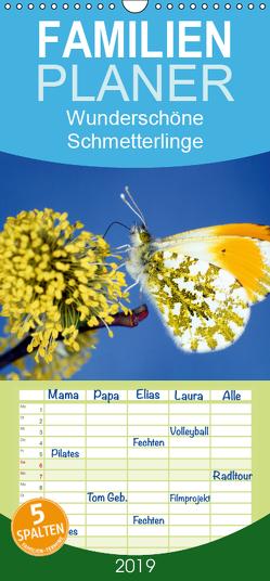 Wunderschöne Schmetterlinge – Familienplaner hoch (Wandkalender 2019 , 21 cm x 45 cm, hoch) von Reupert,  Lothar