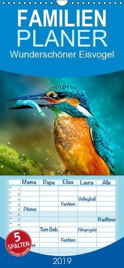 Wunderschöner Eisvogel – Familienplaner hoch (Wandkalender 2019 , 21 cm x 45 cm, hoch) von Roder,  Peter