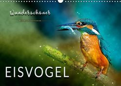 Wunderschöner Eisvogel (Wandkalender 2019 DIN A3 quer) von Roder,  Peter