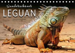 Wunderschöner Leguan (Tischkalender 2018 DIN A5 quer) von Roder,  Peter