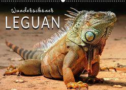 Wunderschöner Leguan (Wandkalender 2018 DIN A2 quer) von Roder,  Peter