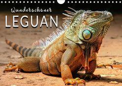 Wunderschöner Leguan (Wandkalender 2019 DIN A4 quer) von Roder,  Peter
