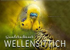 Wunderschöner Wellensittich (Wandkalender 2019 DIN A2 quer) von Roder,  Peter