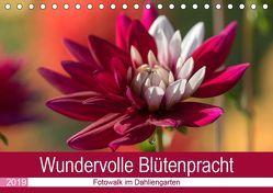 Wundervolle Blütenpracht – Fotowalk im Dahliengarten (Tischkalender 2019 DIN A5 quer) von und Sonja Teßen,  André