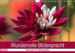 Wundervolle Blütenpracht – Fotowalk im Dahliengarten (Wandkalender 2019 DIN A4 quer) von und Sonja Teßen,  André