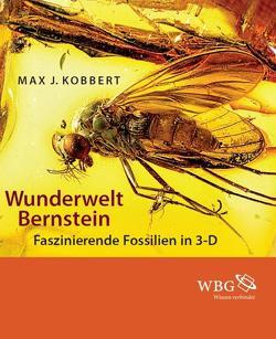 Wunderwelt Bernstein von Kobbert,  Max J