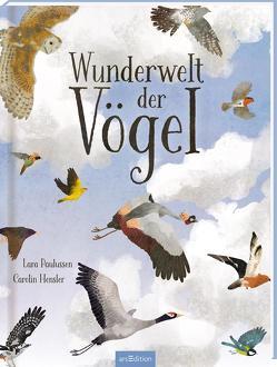 Wunderwelt der Vögel von Hensler,  Carolin, Paulussen,  Lara