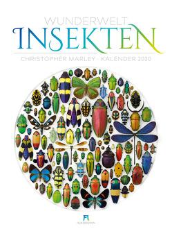 Wunderwelt Insekten 2020 von Marley,  Christopher