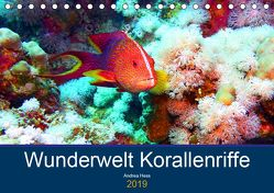 Wunderwelt Korallenriffe (Tischkalender 2019 DIN A5 quer) von Hess,  Andrea