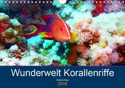 Wunderwelt Korallenriffe (Wandkalender 2019 DIN A4 quer) von Hess,  Andrea