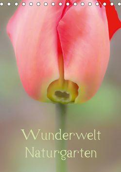 Wunderwelt Naturgarten (Tischkalender 2019 DIN A5 hoch) von Renken,  Erwin