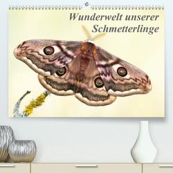 Wunderwelt unserer Schmetterlinge (Premium, hochwertiger DIN A2 Wandkalender 2021, Kunstdruck in Hochglanz) von Pelzer (Pelzer-Photography),  Claudia