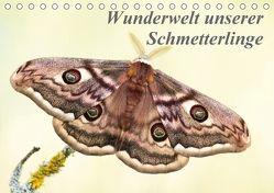 Wunderwelt unserer Schmetterlinge (Tischkalender 2018 DIN A5 quer) von Pelzer (Pelzer-Photography),  Claudia