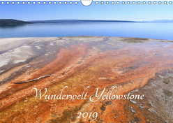 Wunderwelt Yellowstone 2019 (Wandkalender 2019 DIN A4 quer) von Anders,  Holm