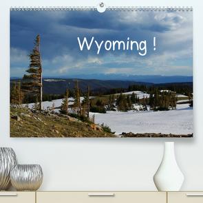 Wyoming! (Premium, hochwertiger DIN A2 Wandkalender 2021, Kunstdruck in Hochglanz) von Del Luongo,  Claudio
