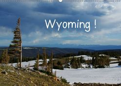 Wyoming! (Wandkalender 2019 DIN A2 quer) von Del Luongo,  Claudio