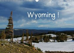 Wyoming! (Wandkalender 2019 DIN A3 quer) von Del Luongo,  Claudio