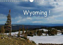 Wyoming! (Wandkalender 2019 DIN A4 quer) von Del Luongo,  Claudio