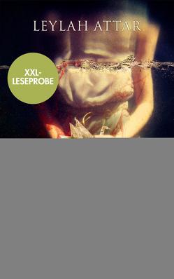 XXL-Leseprobe: Paper Swan – Ich will dich nicht lieben von Attar,  Leylah, Woitynek,  Patricia