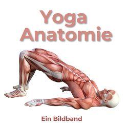 Yoga Anatomie von Hübsch,  Bibi