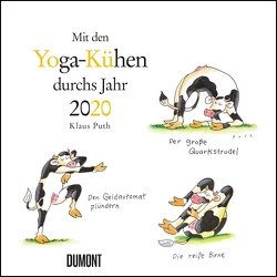 Yoga-Kühe 2020 – Wandkalender – Quadratformat 24 x 24 cm von DUMONT Kalenderverlag, Puth,  Klaus