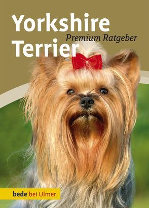 Yorkshire Terrier von Schmitt,  Annette, Wnuk,  Regina
