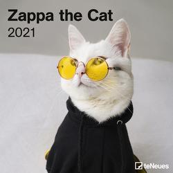 Zappa the Cat 2021 – Wand-Kalender – Broschüren-Kalender – 30×30 – 30×60 geöffnet – Katzen-Kalender