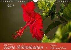 Zarte Schönheiten – Feine HibiskusblütenAT-Version (Wandkalender 2019 DIN A4 quer) von Schumann,  Bianca