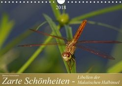 Zarte Schönheiten – Libellen der Malaiischen Halbinsel (Wandkalender 2018 DIN A4 quer) von Schumann,  Bianca