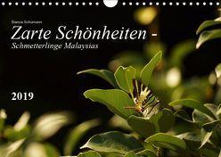 Zarte Schönheiten – Schmetterlinge MalaysiasCH-Version (Wandkalender 2019 DIN A4 quer) von Schumann,  Bianca