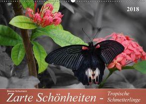 Zarte Schönheiten – Tropische SchmetterlingeCH-Version (Wandkalender 2018 DIN A2 quer) von Schumann,  Bianca