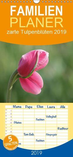 zarte Tulpenblüten 2019 – Familienplaner hoch (Wandkalender 2019 , 21 cm x 45 cm, hoch) von Scholze,  Verena