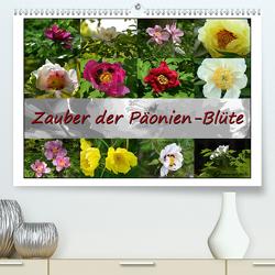 Zauber der Päonien-Blüte (Premium, hochwertiger DIN A2 Wandkalender 2020, Kunstdruck in Hochglanz) von Reiter,  Monika