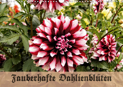 Zauberhafte Dahlienblüten (Wandkalender 2021 DIN A3 quer) von Schneller,  Helmut