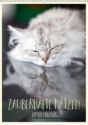 Zauberhafte Katzen – Familienplaner (Wandkalender 2018 DIN A2 hoch) von Viola,  Melanie