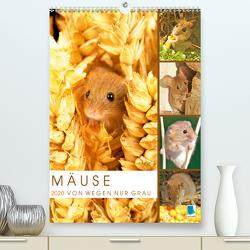 Zauberhafte Mäuse: Von wegen nur Grau (Premium, hochwertiger DIN A2 Wandkalender 2020, Kunstdruck in Hochglanz) von CALVENDO