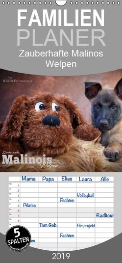 Zauberhafte Malinos Welpen – Belgische Schäferhunde – Familienplaner hoch (Wandkalender 2019 , 21 cm x 45 cm, hoch) von Wrede,  Martina