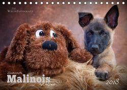 Zauberhafte Malinos Welpen – Belgische Schäferhunde (Tischkalender 2018 DIN A5 quer) von Wrede,  Martina