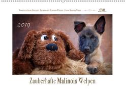 Zauberhafte Malinos Welpen – Belgische Schäferhunde (Wandkalender 2019 DIN A2 quer) von Wrede,  Martina