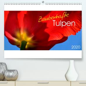 Zauberhafte Tulpen (Premium, hochwertiger DIN A2 Wandkalender 2020, Kunstdruck in Hochglanz) von Trabant,  Gesine