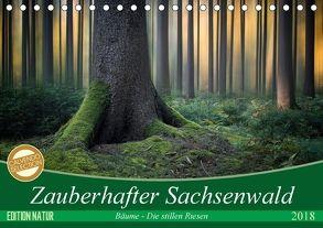 Zauberhafter Sachsenwald (Tischkalender 2018 DIN A5 quer) von Meyerdierks,  Carsten