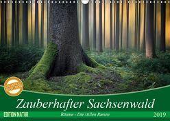 Zauberhafter Sachsenwald (Wandkalender 2019 DIN A3 quer) von Meyerdierks,  Carsten